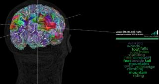 Brain Atlas Kids Pic1