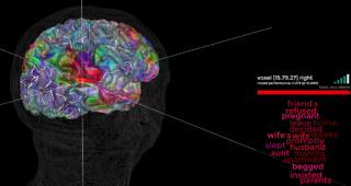 Brain Atlas Pic2(1)