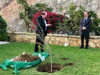 Oman Fruiterers Tree Planting